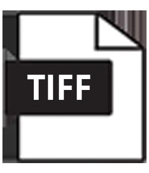 TIFF - preferred RASTER format